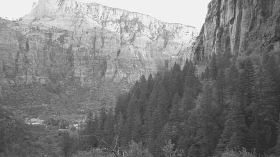 What Would it Have Been Like to Visit Zion in 1919?